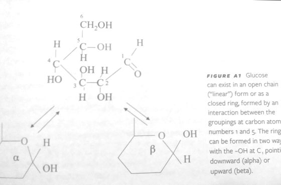 Img1 - piccolo chimico
