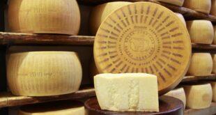 Birra e formaggi: gli abbinamenti con i Presidi Slow Food a latte di vacca