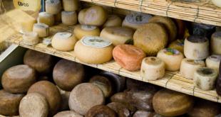 Birra e formaggi: gli abbinamenti con i Presidi Slow Food a latte di pecora