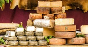 Birra e formaggi: gli abbinamenti con i Presidi Slow Food a latte di capra
